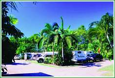 Tropical Hibiscus Caravan Park - Accommodation NT