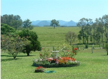 Tallowood Ridge Farmstay B