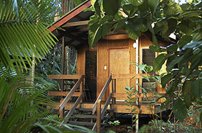 Cape Trib Beach House - Accommodation NT