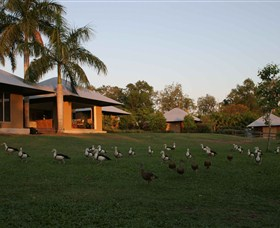Feathers Sanctuary - Accommodation NT