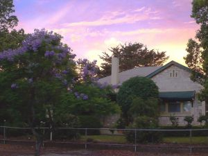 Angaston Rose BB - Accommodation NT