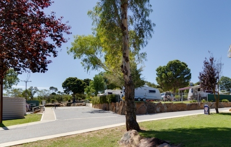 Avoca Dell Caravan Park - Accommodation NT