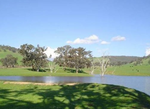Hillview Farmstay - Accommodation NT
