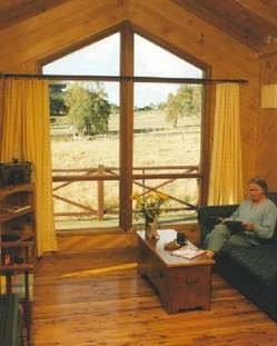 Wisteria Cottage - Accommodation NT