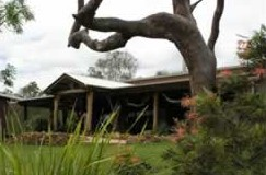 The Hollow Log Country Retreat - Accommodation NT