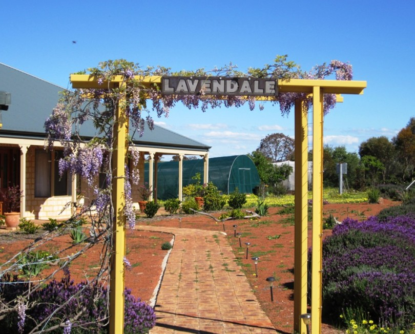 Lavendale Farmstay and Cottages - Accommodation NT