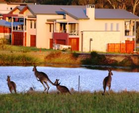 Grand Mercure The Vintage Hunter Valley - Accommodation NT