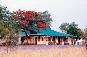 Wauchope Hotel and Roadhouse - Accommodation NT