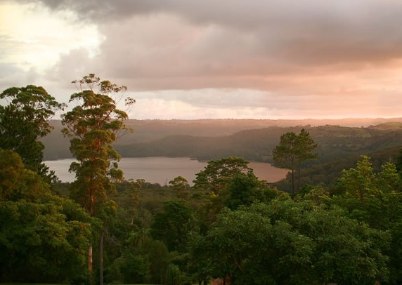 Montville Misty View Cabins - Accommodation NT