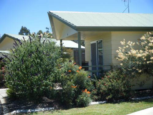 Pepper Tree Cabins - Accommodation NT