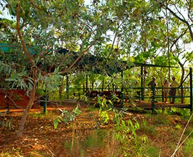 Arnhemland Barramundi Nature Lodge - Accommodation NT