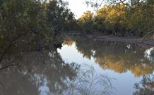 Four Mile Camping Reserve - Accommodation NT