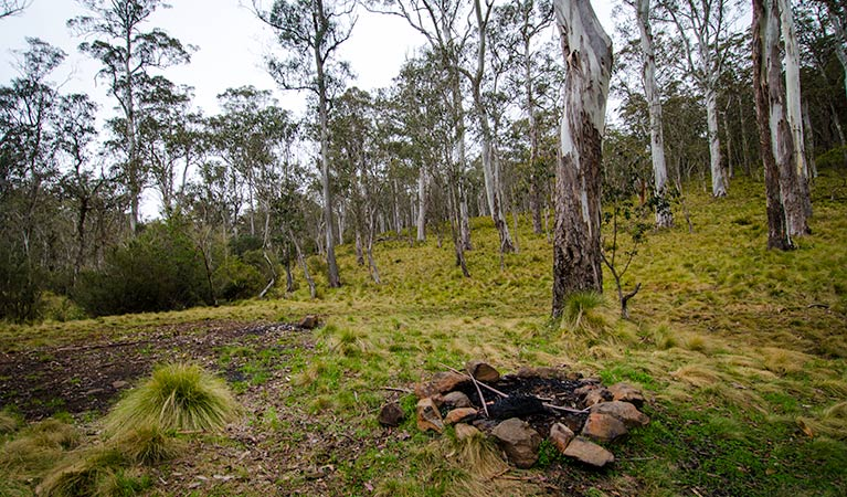 Gummi Falls campground - Accommodation NT