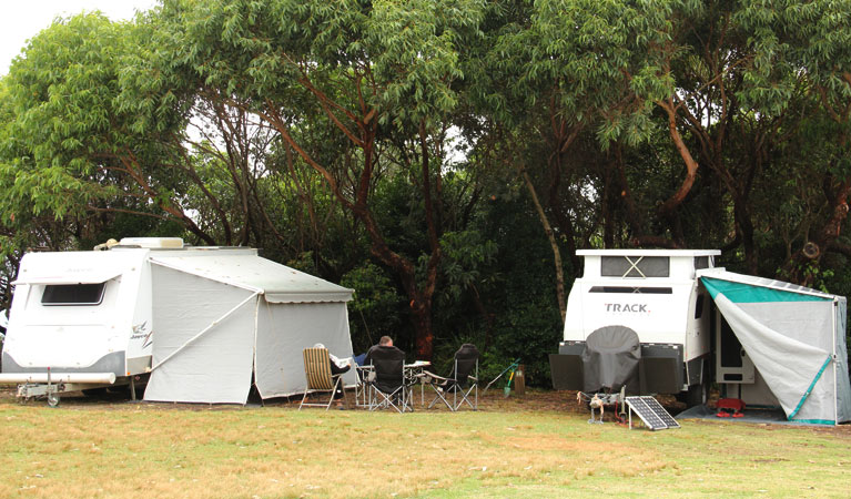 Pretty Beach campground - Murramarang National Park - Accommodation NT