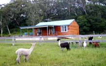 Moorallie Cottage Farm Stay - Accommodation NT