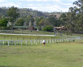 Kellarni Downs Farmstay-Scenic Rim - Accommodation NT