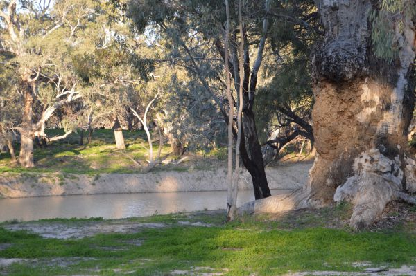 Beds in the Barwon - Accommodation NT