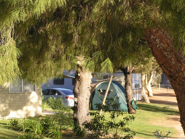 Barmera North Lake Caravan Park - Accommodation NT