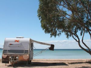 Discovery Parks - Streaky Bay Foreshore - Accommodation NT