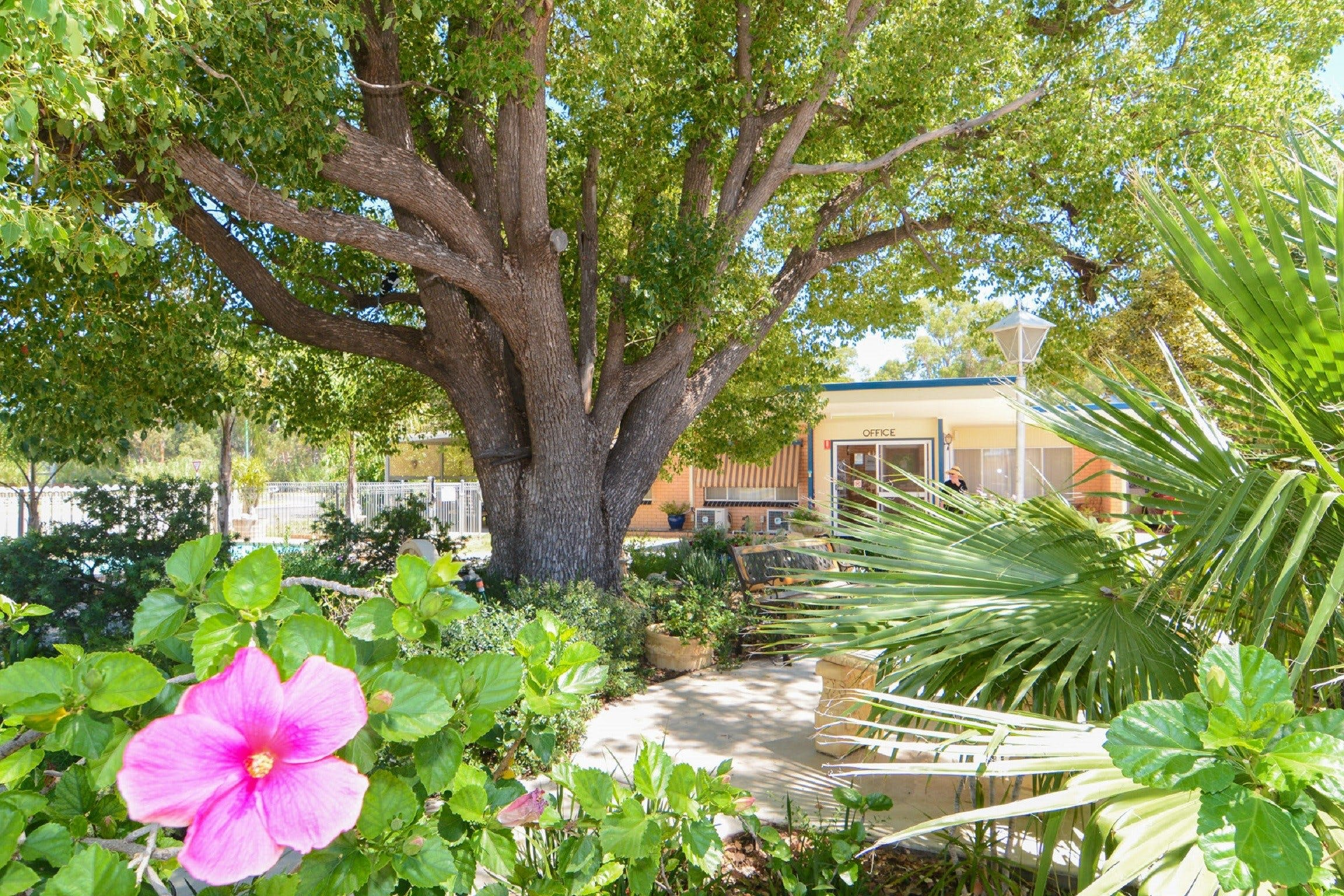 Balranald Sturt Motel - Accommodation NT