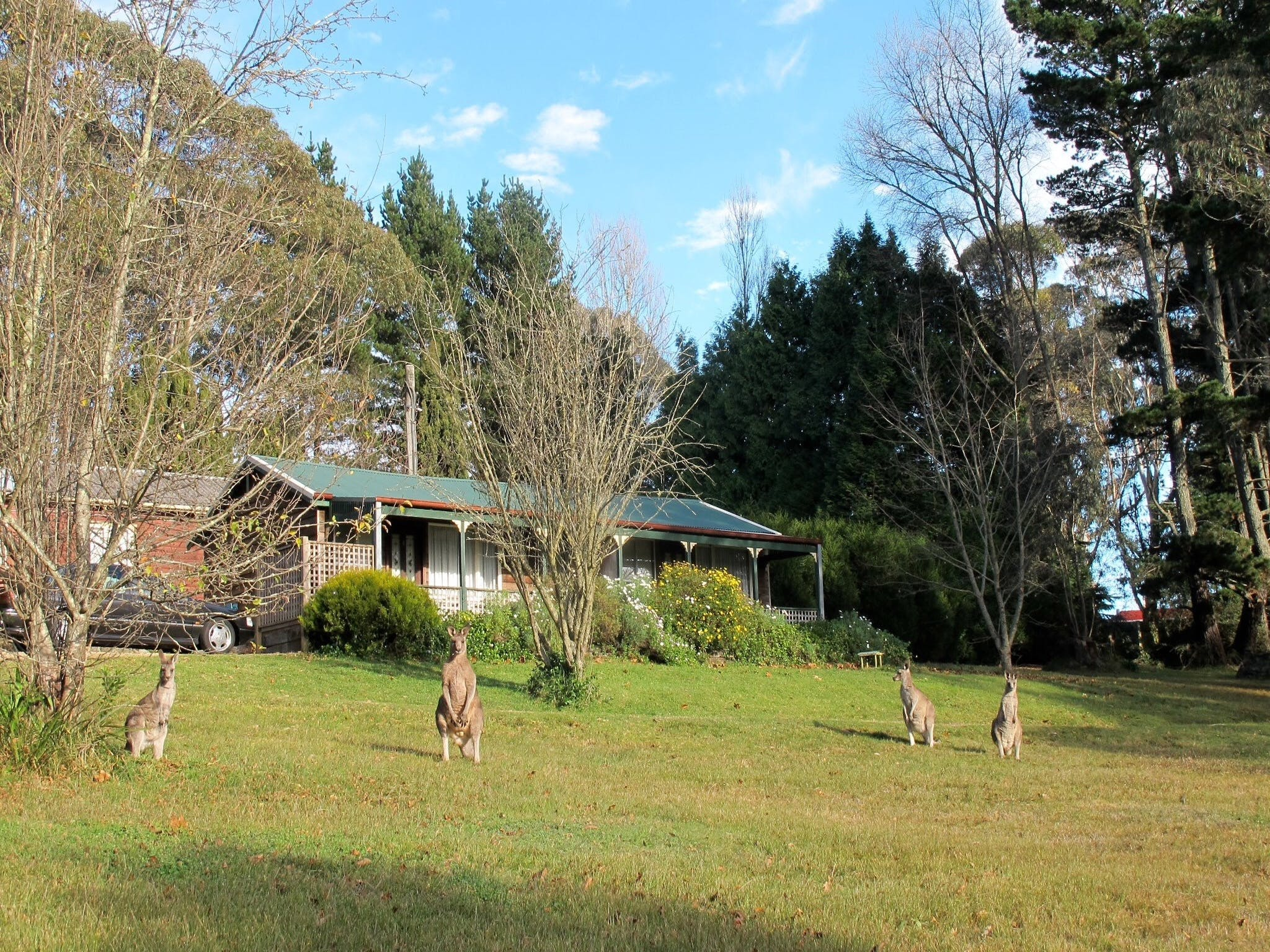 Cedar Lodge Cabins - Accommodation NT