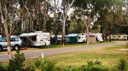 Buronga Riverside Tourist Park - Accommodation NT