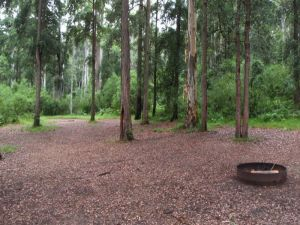 Murphys Glen campground - Accommodation NT