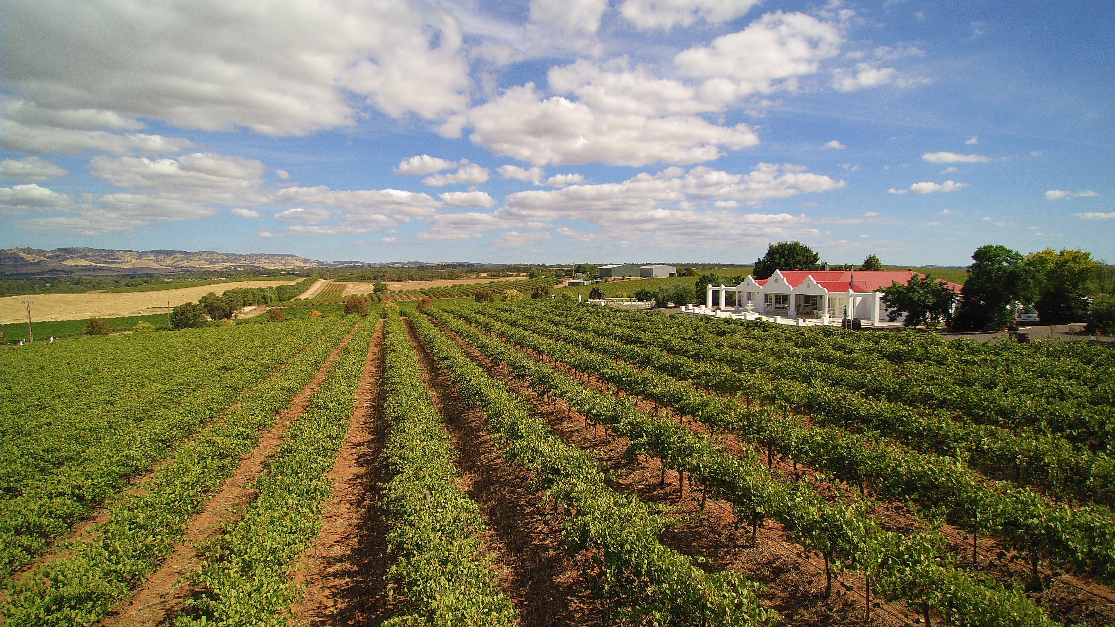 1837 Barossa Luxury Vineyard Cottages - Accommodation NT