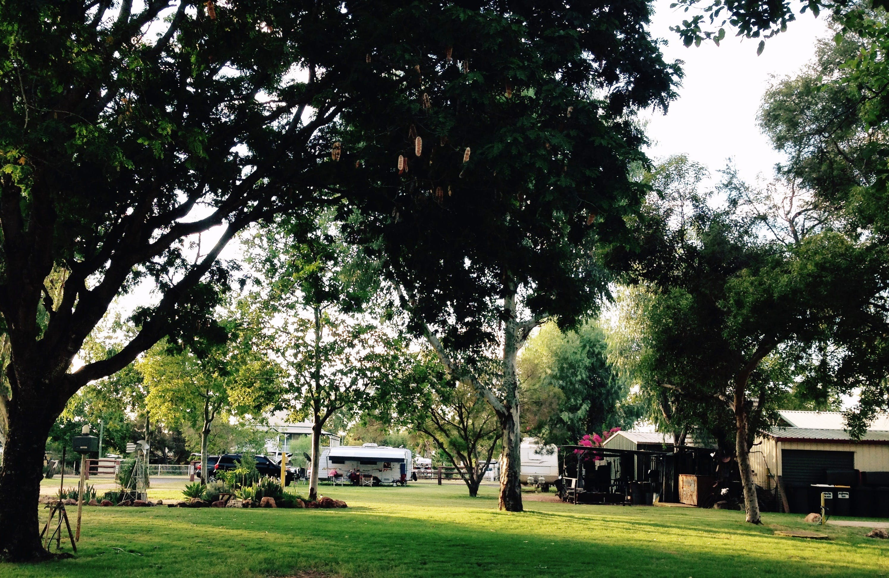 Bailey Bar Caravan Park - Accommodation NT