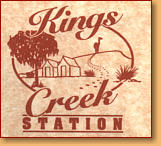 Kings Creek Station - Accommodation NT