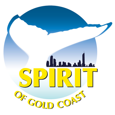 Spirit of Gold Coast Whale Watching - Accommodation NT