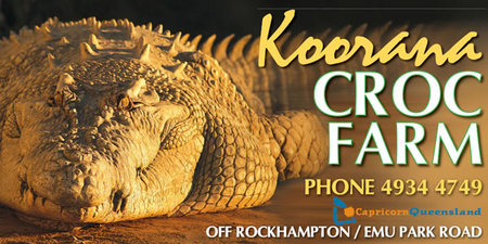 Koorana Saltwater Crocodile Farm - Accommodation NT