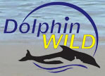 Dolphin Wild - Accommodation NT
