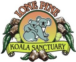 Lone Pine Koala Sanctuary - Accommodation NT