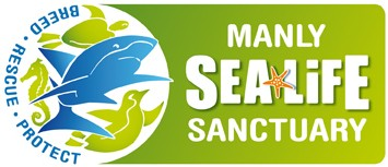 Manly SEA LIFE Sanctuary - Accommodation NT