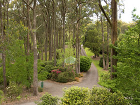 Mount Lofty Botanic Garden - Accommodation NT