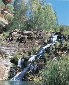 Fortescue Falls - Accommodation NT