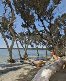 Stokes National Park - Accommodation NT
