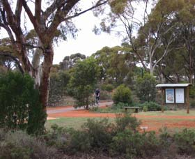 Gribble Creek Walk and Cycle Way - Accommodation NT