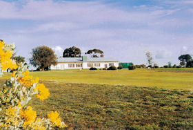 Lucindale Country Club - Accommodation NT