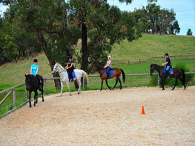 Megan Jones Riding School and Trail Rides - Accommodation NT