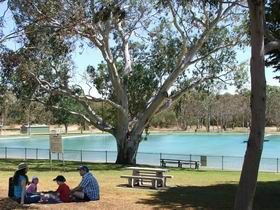 Naracoorte Nature Park and Swimming Lake - Accommodation NT