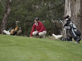 Tasmania Golf Club - The - Accommodation NT