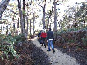 Bridport Walking Track - Accommodation NT
