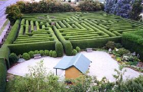 Westbury Maze and Tea Room - Accommodation NT