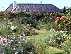 Rosedown Gardens - Accommodation NT