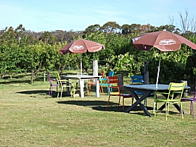Cerise Brook Orchard  Family Golf - Accommodation NT