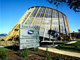 Forest EcoCentre - Accommodation NT