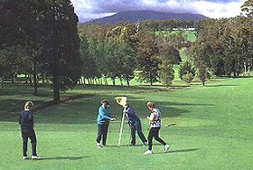 Deloraine Golf Course - Accommodation NT