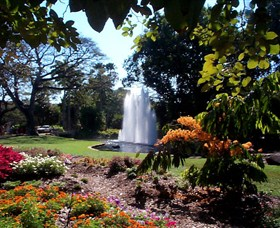 George Brown Darwin Botanic Gardens - Accommodation NT
